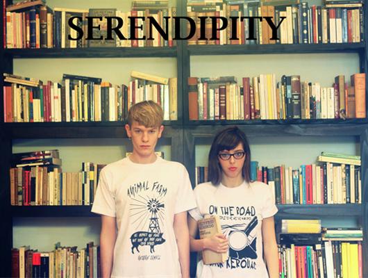 "Serendipity: ""poleras literarias"""