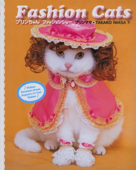 Fashion Cats, el nuevo libro de VICE
