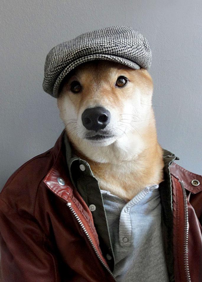 Menswear Dog, el perro fashionista con blog