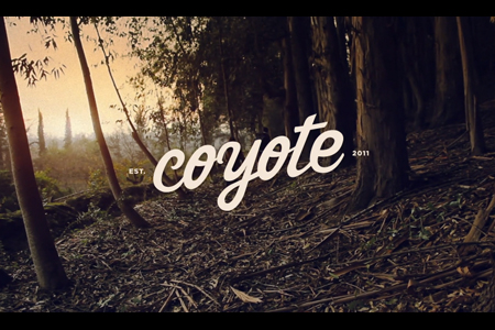 VLC ♥ Coyote handmade Bags