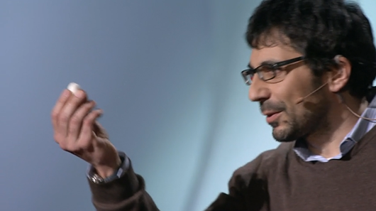 Seda, el antiguo material del futuro: la charla de Fiorenzo Omenetto en TED