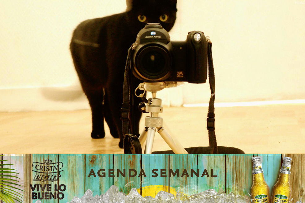 Agenda Cristal Light: Panoramas del 7 al 10 de agosto + ¡concurso!