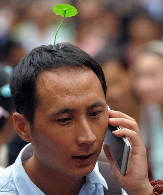 La tendencia asiática de llevar brotes en el pelo
