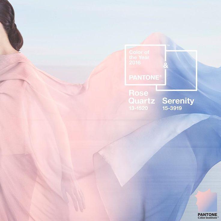¿Cómo entender el efecto de los dos colores elegidos por Pantone para el 2016?