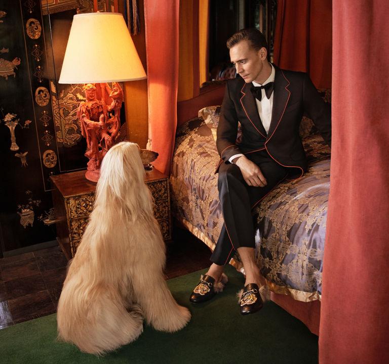 Tom Hiddleston es el nuevo modelo de Gucci