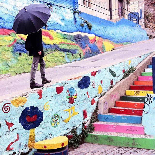 Las coloridas postales de Valparaíso según @tichamercado