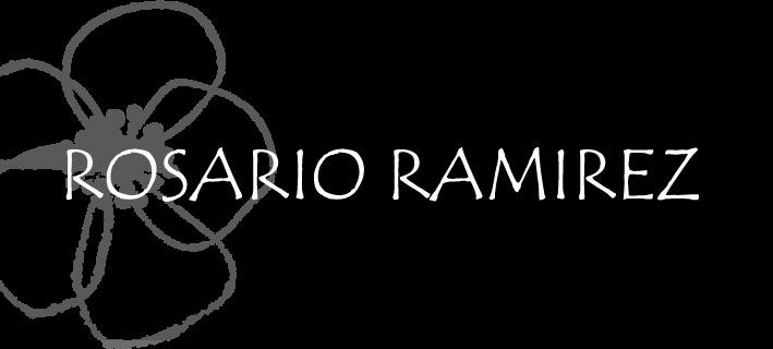 Desfile VisteLaCalle: Rosario Ramirez