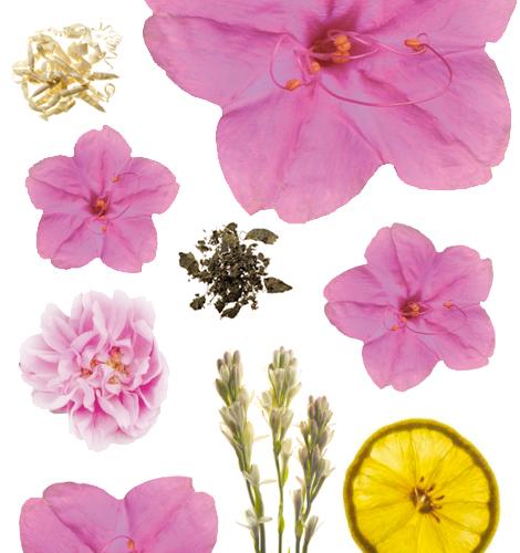 Gana 4 perfumes Ricci Ricci, la nueva fragancia de Nina Ricci