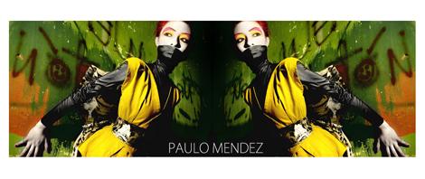 Diseñadores VLC: Paulo Méndez