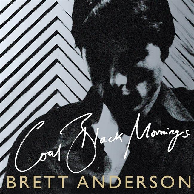 Coal Black Mornings, las memorias de Brett Anderson en un libro