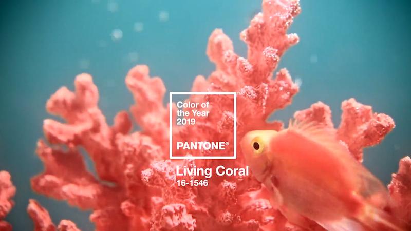 Cómo llevar el Living Coral, el color Pantone de 2019, según estilistas y asesores de imagen chilenos