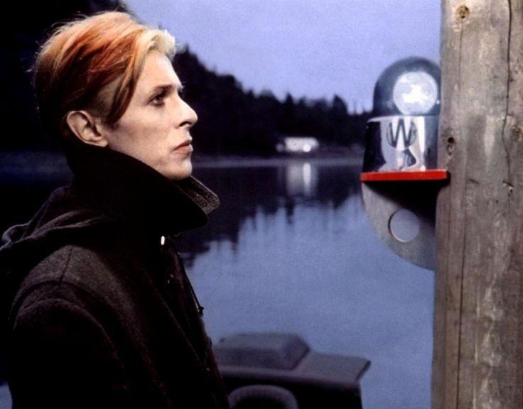 Las películas de David Bowie
