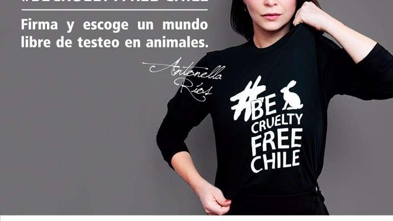 #BeCrueltyFreeChile: ¿Cuáles son las marcas de belleza que no testean en animales?
