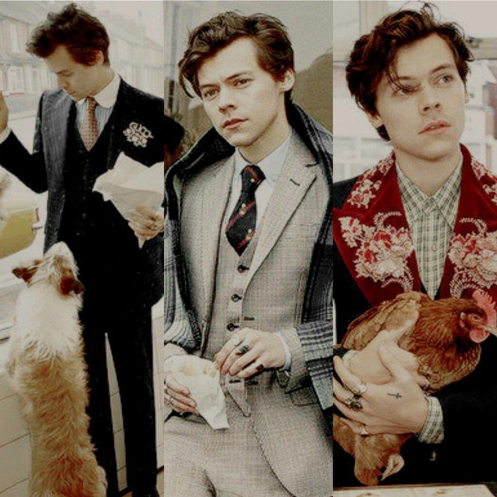 Harry Styles y su campaña junto a Gucci Tailoring