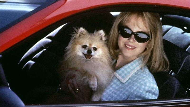 "Antes de ""Big Little Lies"": Cuando Nicole Kidman era la mala de ""To die for"" (1995)"