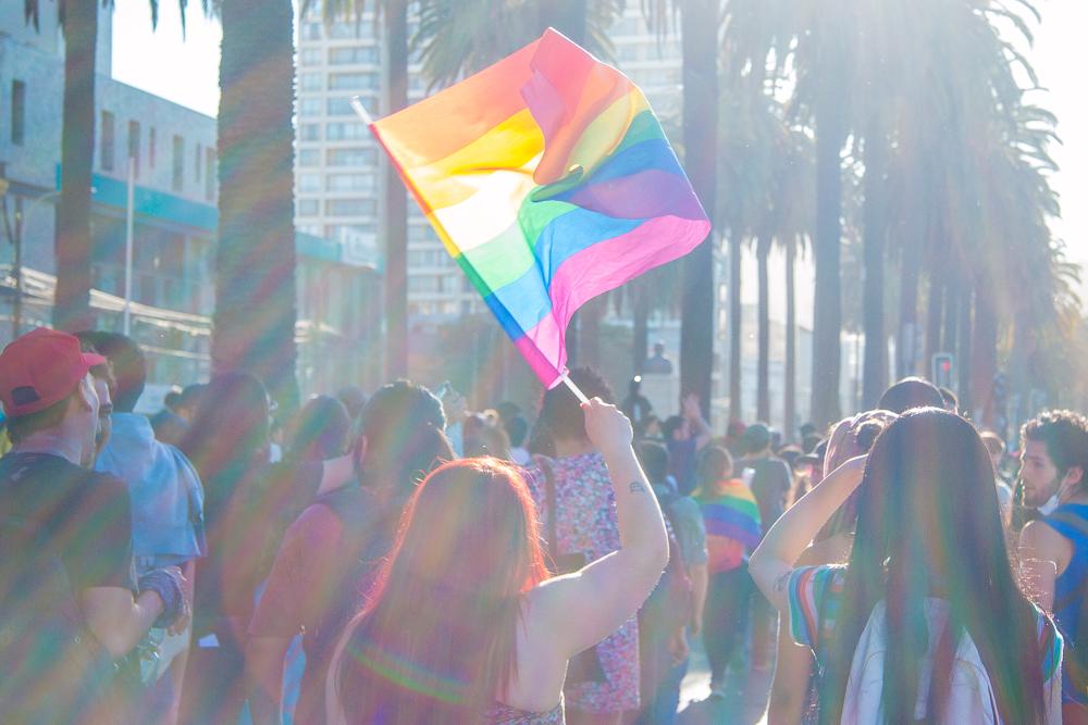 """""""Marcha por el descontento no heterosexual"""", un registro de @lester_villarroel"""