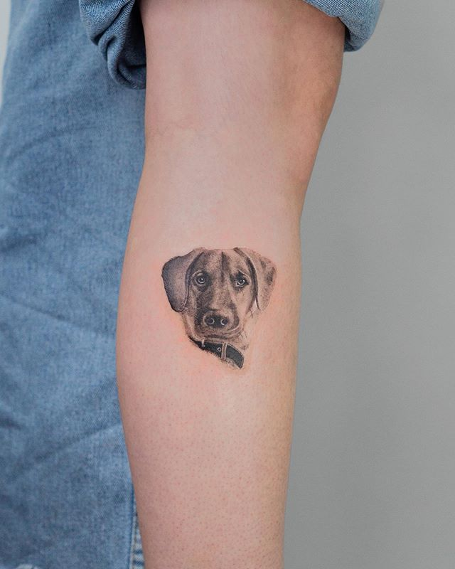 Diseño exclusivo desde el sur de Chile: Entrevista a Felipe Abel, tatuador osornino